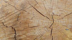 Kotol na drevo v modernej dobe